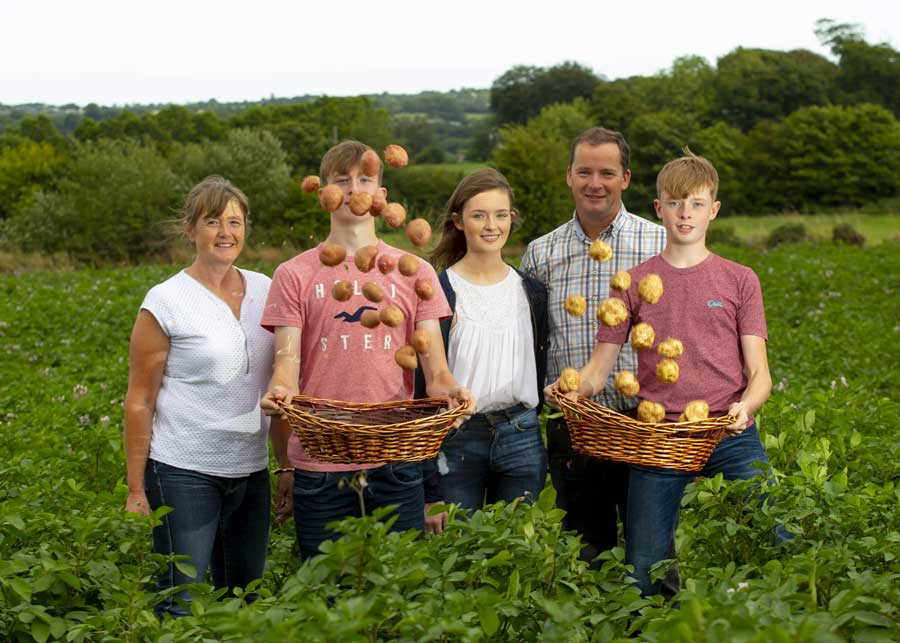 Whelan Potatoes