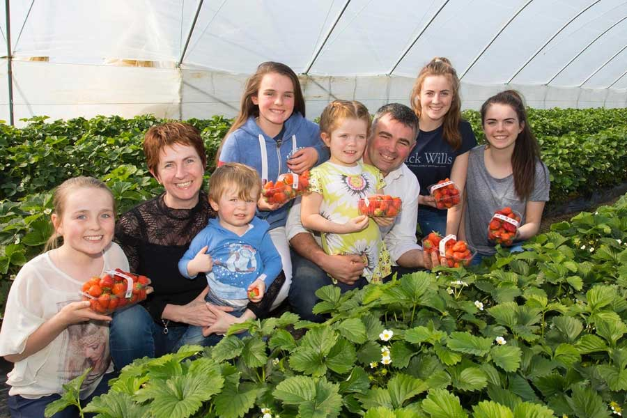 Greenhill Fruit Farm